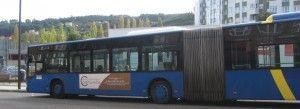 Transporte adaptado y paneles informativos en las paradas