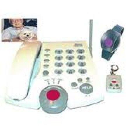 Potenciar el Servicio de  ayuda a domicilio y la tele-asistencia