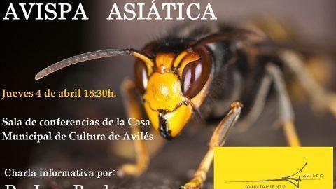 Charla: La problemática de la avispa asiática (vespa velutina)